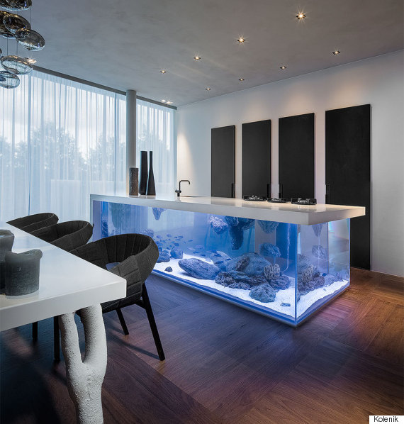 kitchen aquarium island