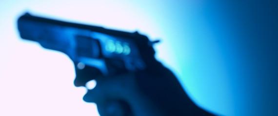 GUNS TERROR WATCH LIST