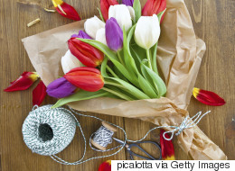 3 Ways You Didn't Realize You're Killing Your Tulips