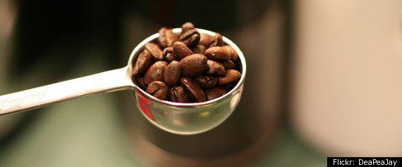 COFFEE ROAST GUIDE