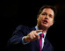 Nick Clegg Warns Against Letting 'Rag Tag Mob' Of Ukip And The SNP Anywhere Near Power