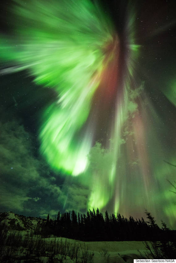 aurora st patties