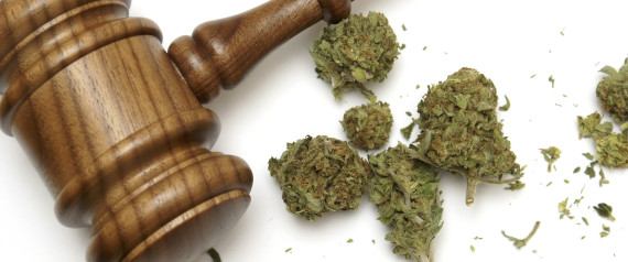 GAVEL MARIJUANA