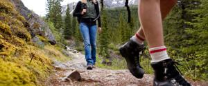 Hiking Alberta