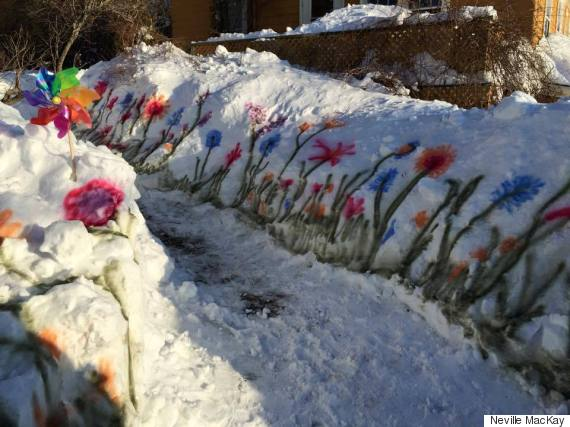 halifax flowers