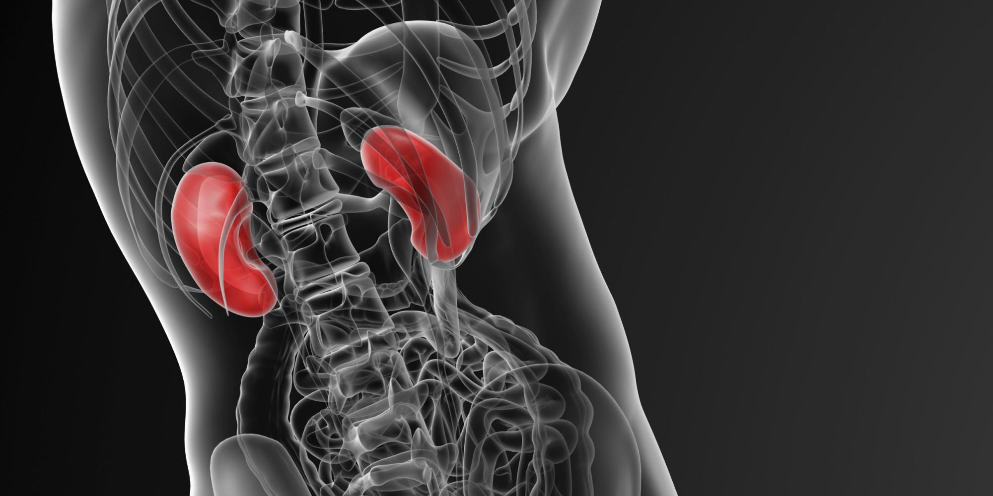 zehn anzeichen dafür, dass sie an einer nierenkrankheit leiden