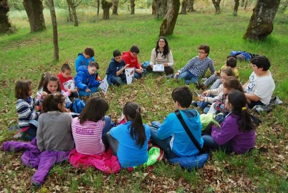 educacion medio ambiente