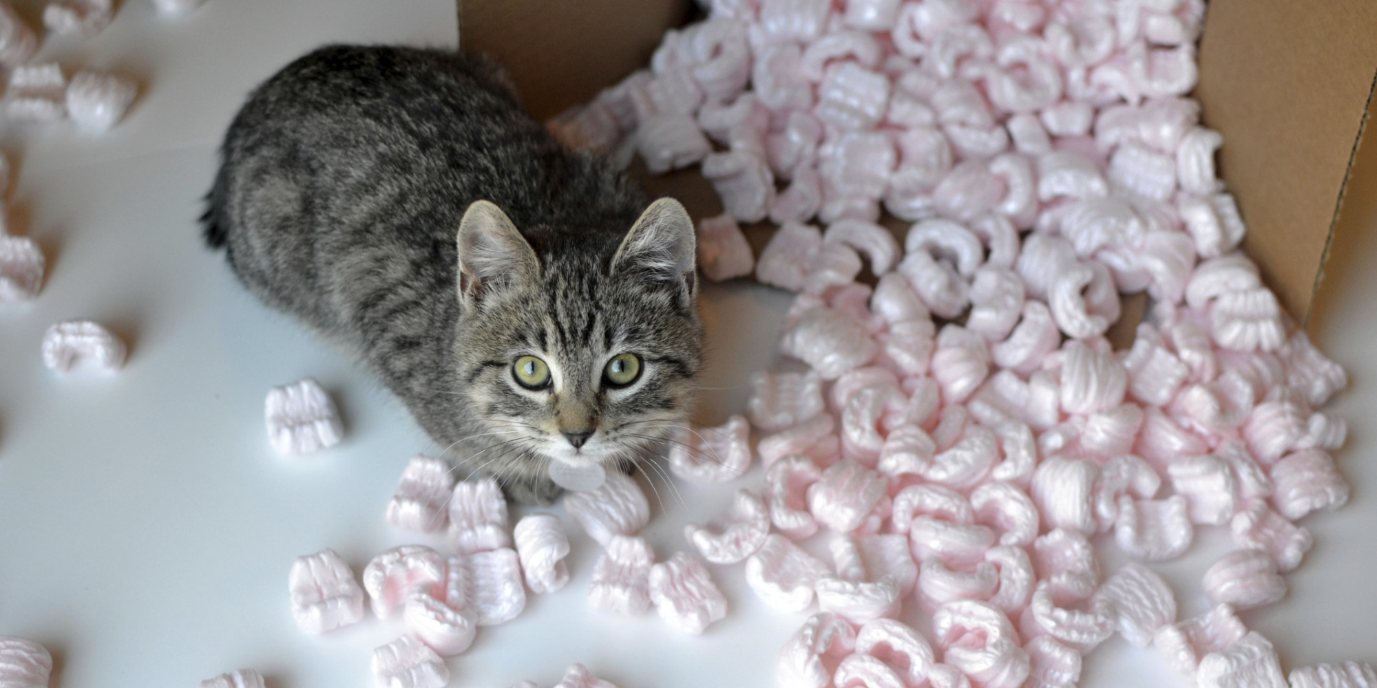Scientists Convert Packing Peanuts Into Better Battery