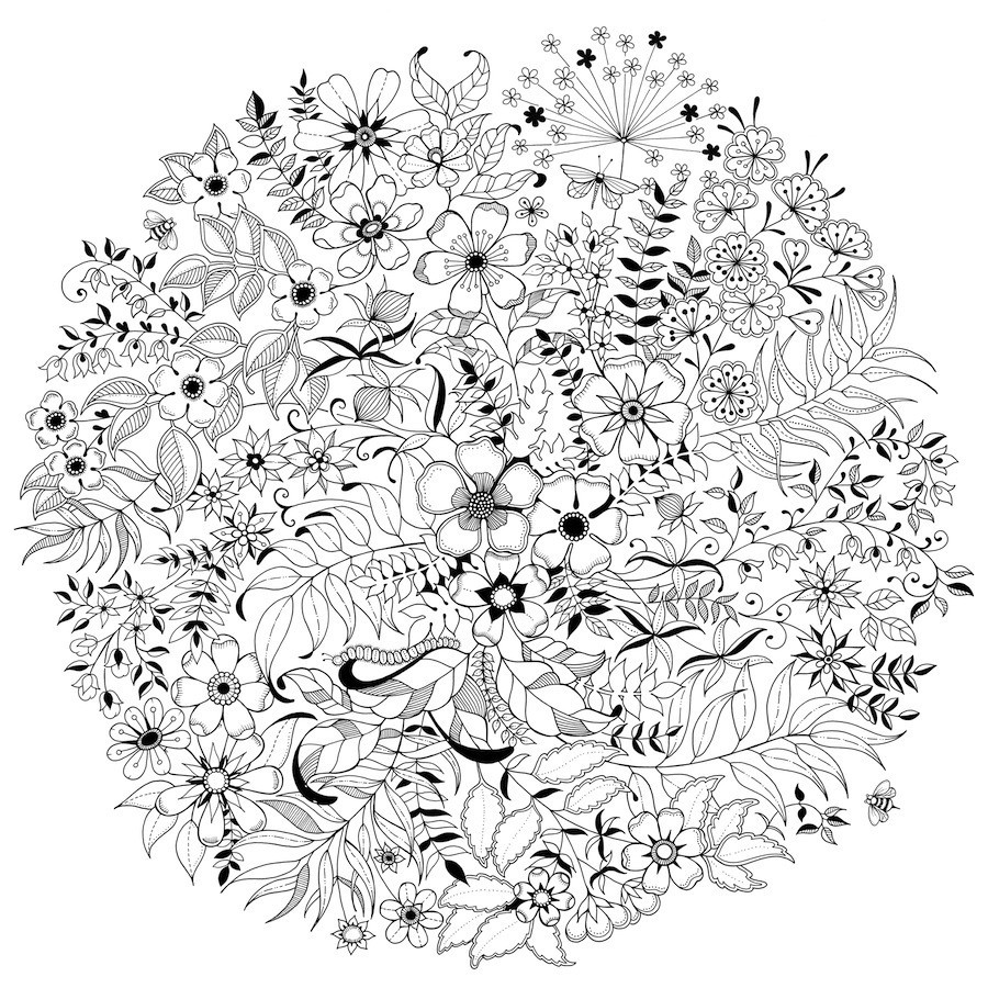 twig - Images Of Coloring Pictures