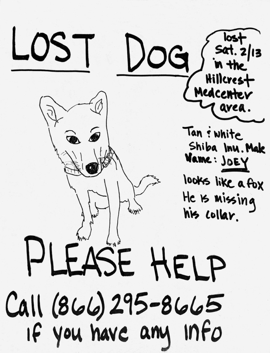 Huffington Post  Lost Dog Poster Template