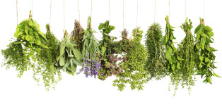 A Visual Guide To Cooking With Herbs