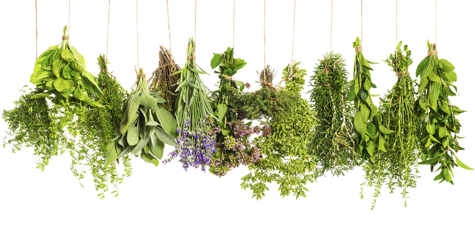 A Visual Guide To Cooking With Herbs | HuffPost