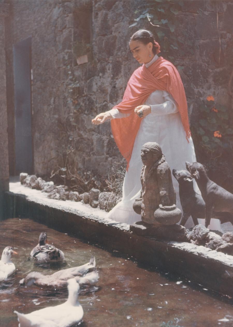 Enchanting vintage photographs of frida kahlo perfectly - La casa vintage ...