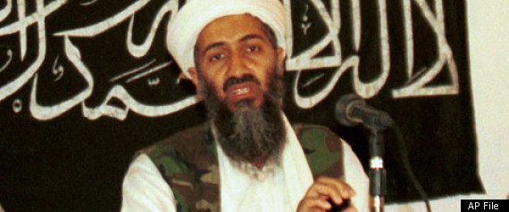 osama bin laden young. IBB, Yemen -- Osama bin Laden