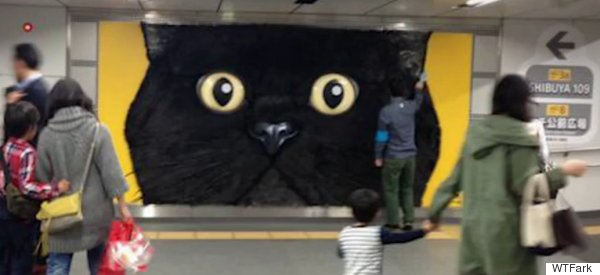 What Is This Giant Pettable Cat Head Advertising?