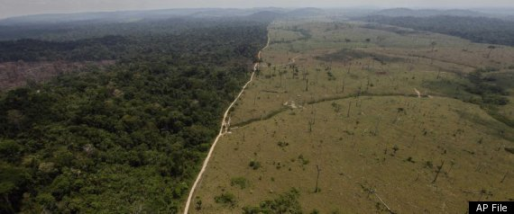 Amazon Deforestation 2011 Brazil