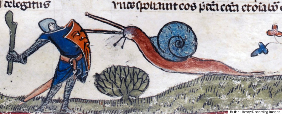 snail fights a knight 3