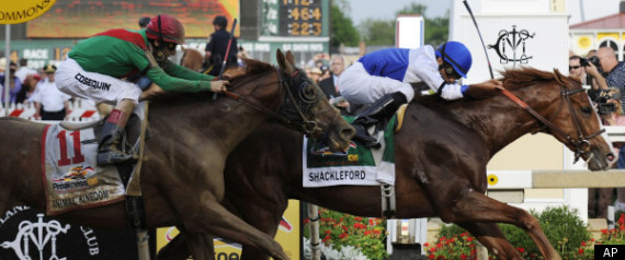 Shackleford Preakness Stakes 2011