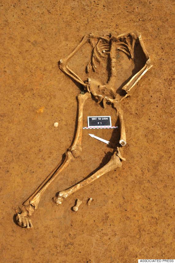 waterloo skeleton