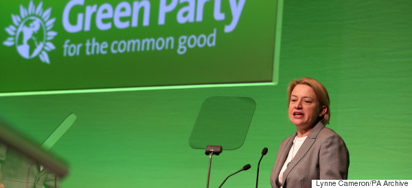 So Who Is The Green Party?