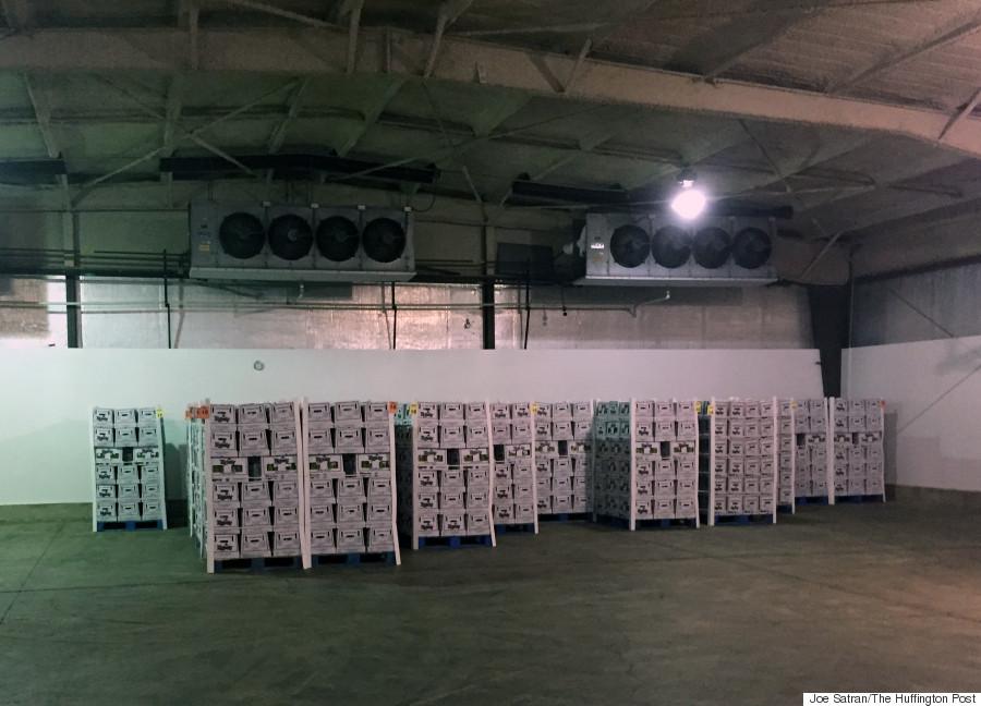 asparagus warehouse