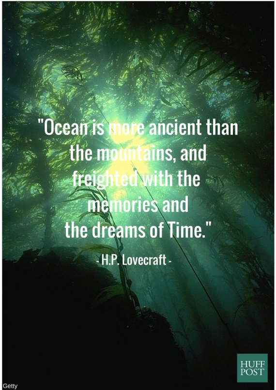 11 Quotes About The Ocean That Remind Us To Protect It Huffpost