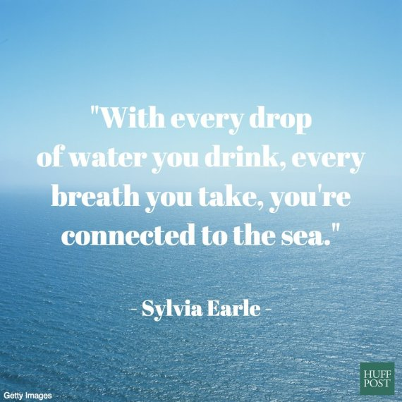 Quotes About Ocean: 11 Quotes About The Ocean That Remind Us To Protect It