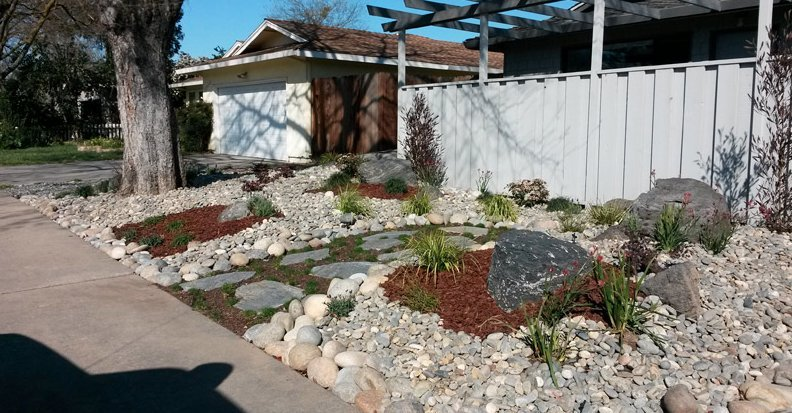 Some landscapers are helping drought stricken california for Landscaping rocks visalia ca