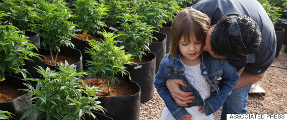 marijuana epilepsy