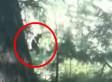 Bigfoot VIDEO: Legendary Creature On Camera In Spokane, Washington? (POLL)