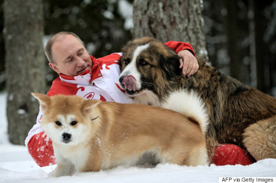 putin dog
