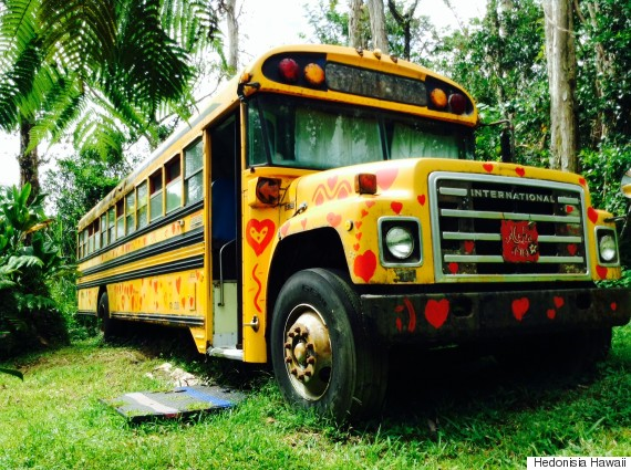 aloha love bus out