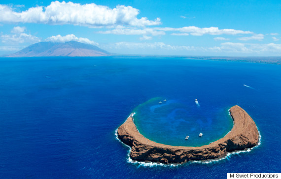 7 Spots That Prove Hawaii Is A Snorkeler S Heaven Huffpost Life