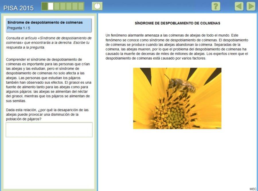 colmenas1