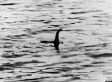 You Can Now Search For The Loch Ness Monster With Google Street View