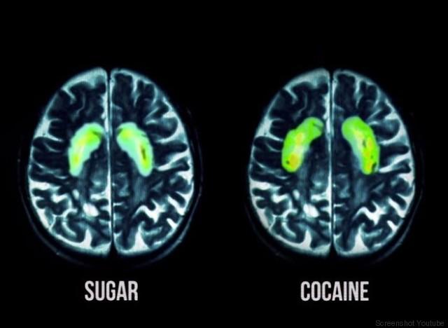 Die Wirkung von Nikotin im Gehirn - Alles ber das Rauchen