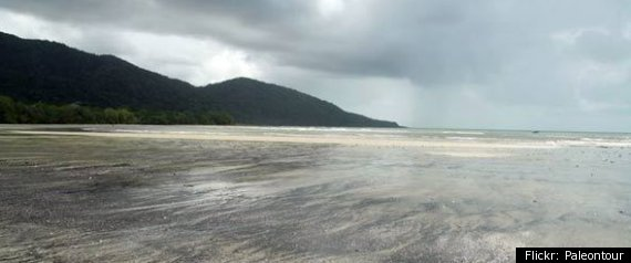 DAINTREE BEACH AUSTRALIA