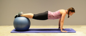 PUSHUP STABILITY BALL