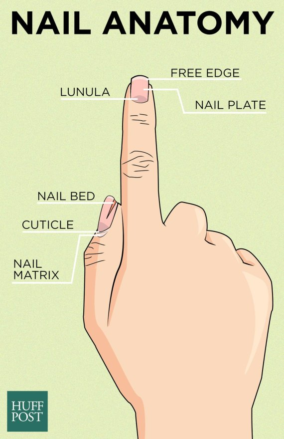 Do Nails Need To \'Breathe\' Between Manicures? | HuffPost