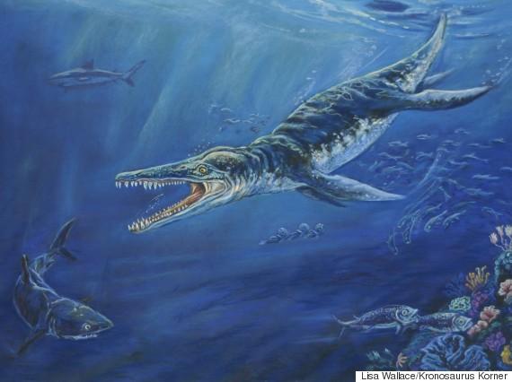 kronosaurus found