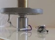 This Tiny 'Gecko Power' Robot Is Way Stronger Than You