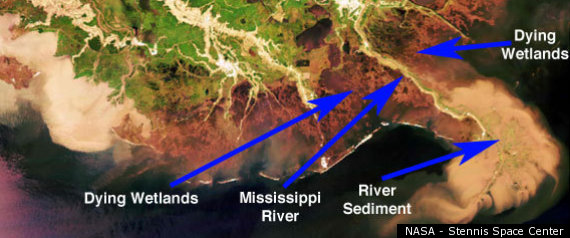 MISSISSIPPI RIVER SEDIMENT