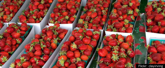 BERRY BUYING MYTHS