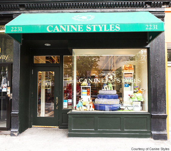 canine styles