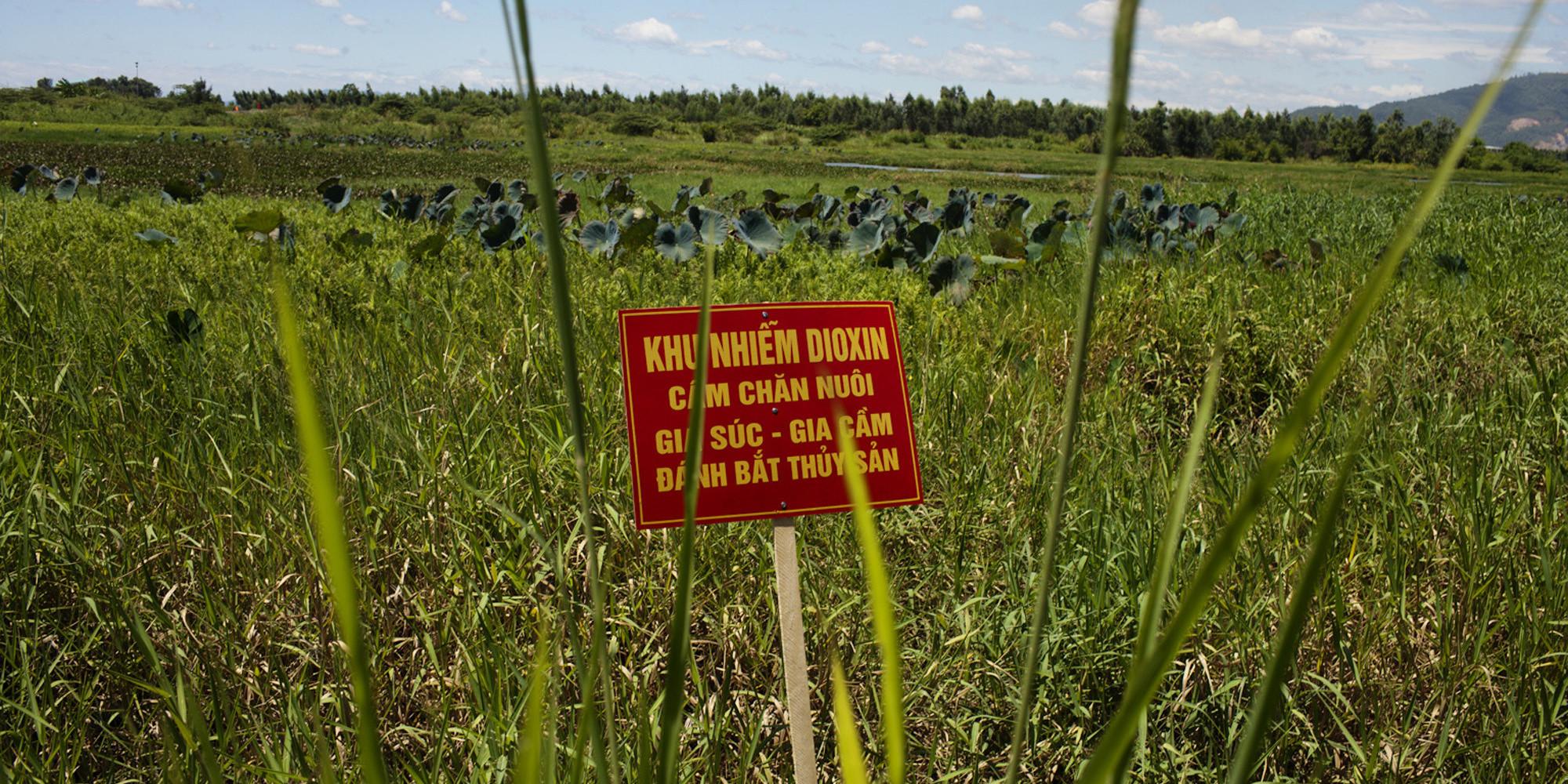 an introduction to the agent orange in the vietnam war Vietnam, us begin agent orange cleanup at former vietnam us dioxin agent orange vietnam war us begin agent orange cleanup at former wartime air base.