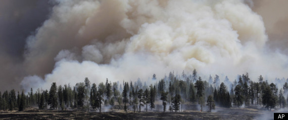 Arizona Wildfire Moves Towards New Mexico