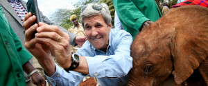 JOHN KERRY ELEPHANT