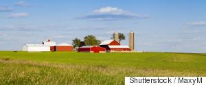 FACTORY FARMING