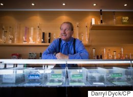 Unclear Rules At Vancouver Pot Shops Unlikely To Change