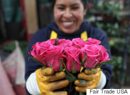 Flower Power: Blooms That Create a Better Life for Mothers Throughout the World